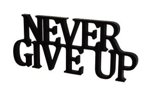 Napis 3D Never give up
